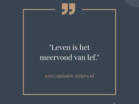 Nederlandse spreuken metalen-letters.nl