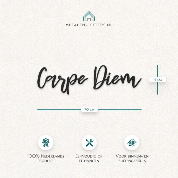 Afmetingen metalen-letters 'Carpe Diem'